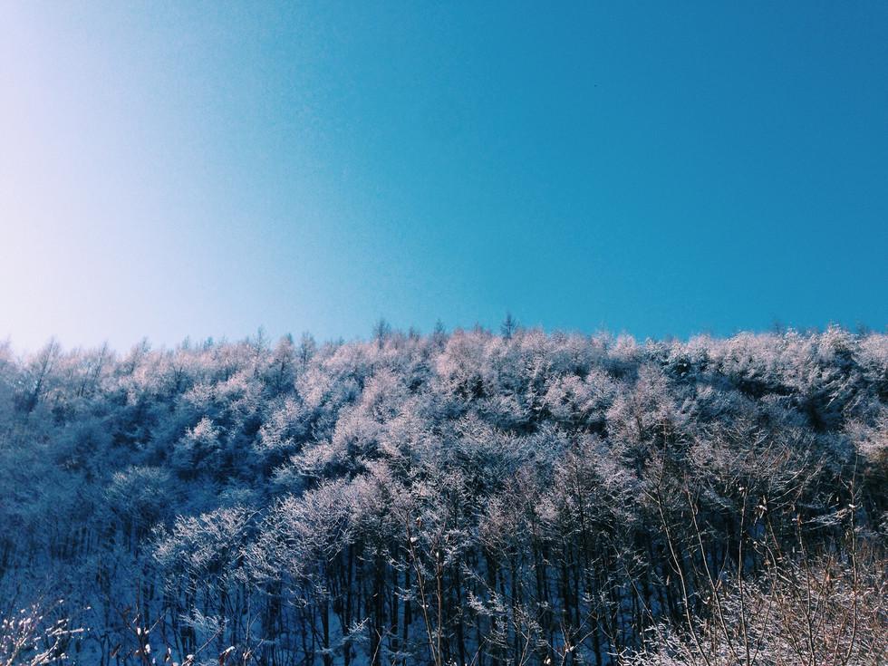 Deep Winter In East