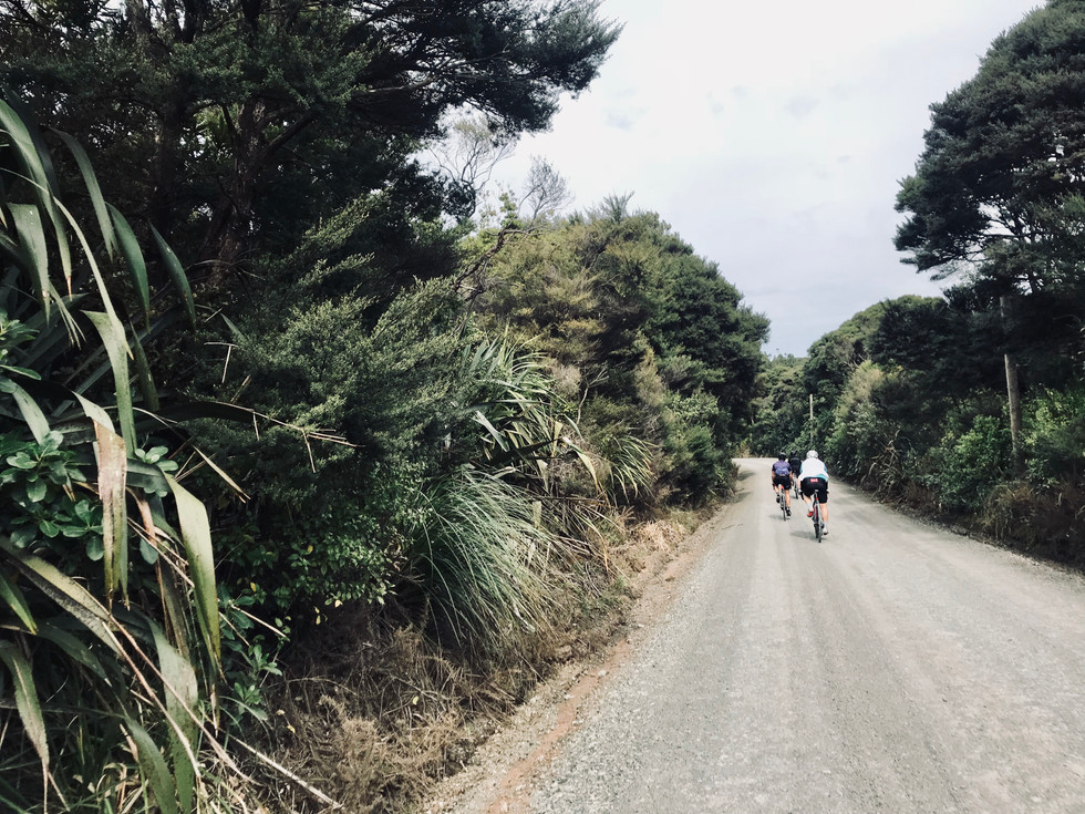 NZ - Friends From The Road