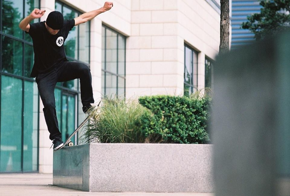 Nose Blunt Pop Out - East India