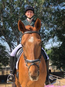 Wil - Dressage Lesson Horse