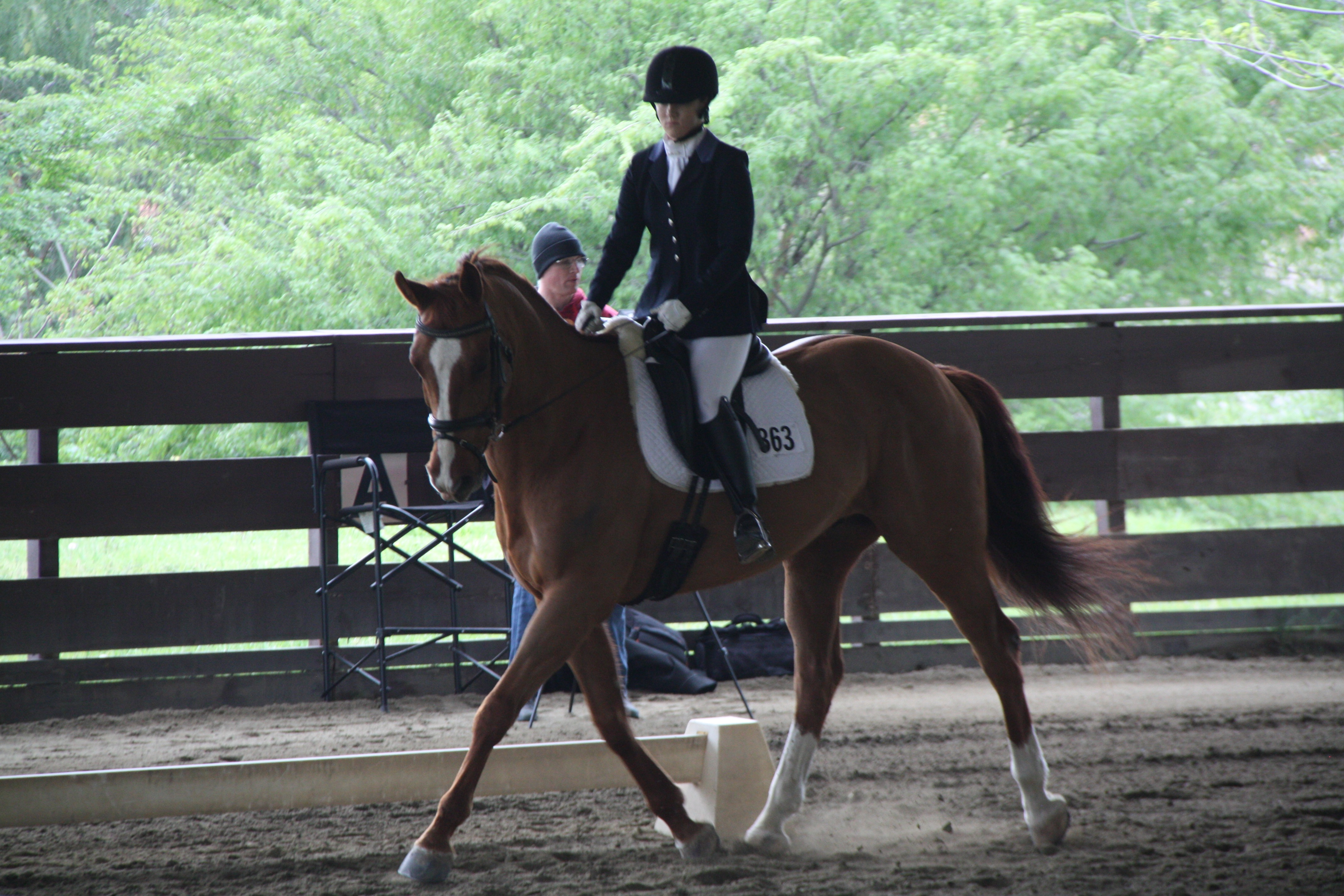 Lucia Rapalyea Dressage - horse show