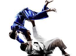 Brazilian Jiu Jitsu Drop In Class