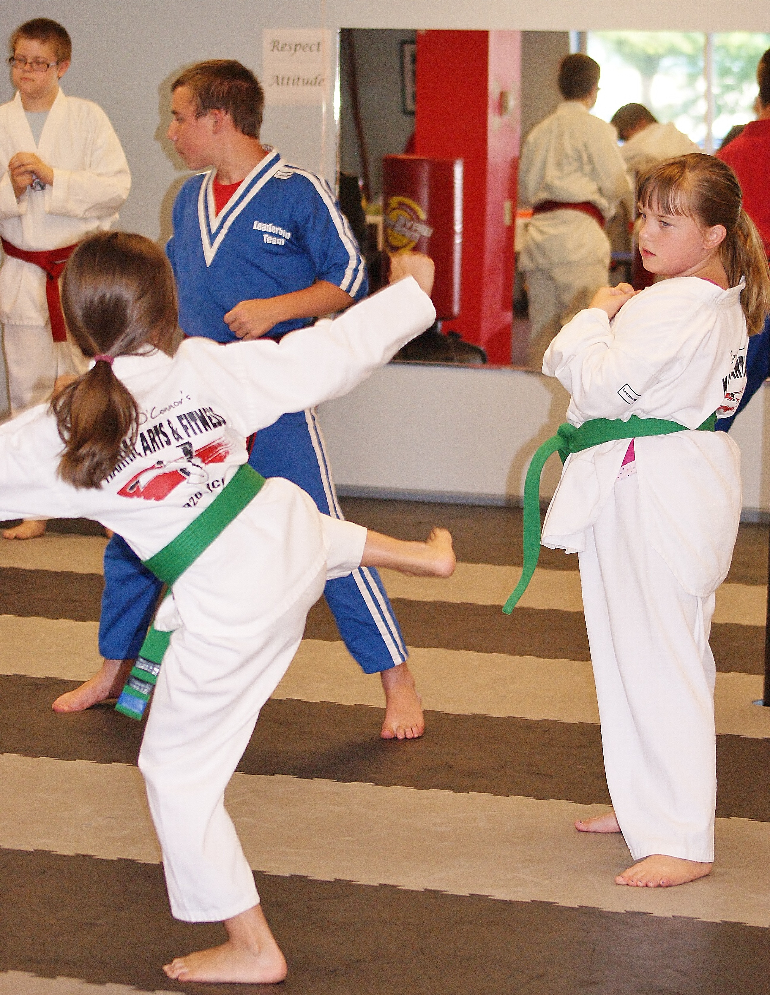 Trial Class Taekwondo Ages 7 and up
