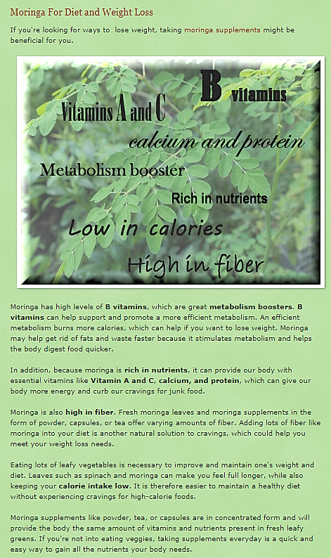 Moringa For Diet and Weight Loss.png