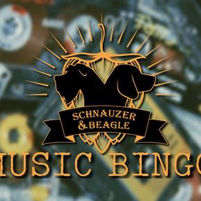 MUSIC BINGO - perfect for music lovers