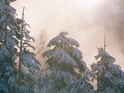 Kom innom og legg fra deg stresset, så du kan nyte adventshelgen - FredagsPeace 8. desember
