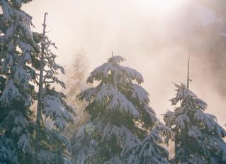 Winter Retreat - Embrace the Nourishment