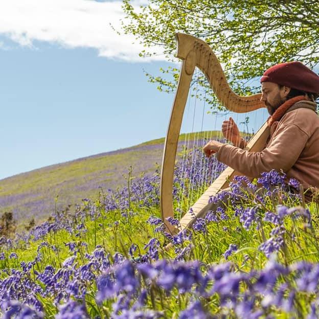An evening of Welsh harp music