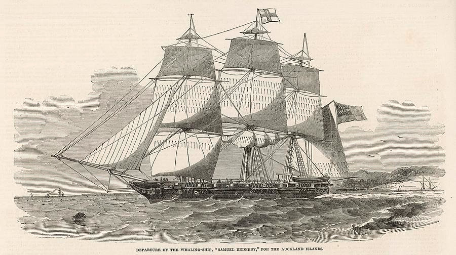 the-samuel-enderby-a-whaling-ship-illust