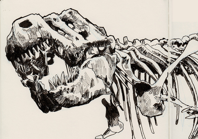 s-t-rex_3.jpg