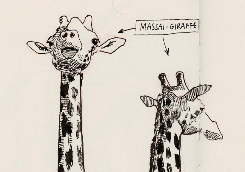 s_giraffen_2.jpg