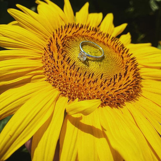 sunflower engagement ring.jpg