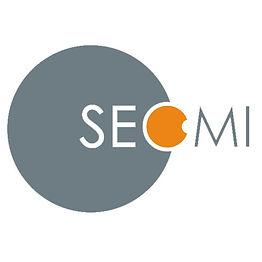 Logo SEOMI.jpg