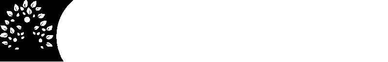 adirondack-foundation-horizontal-logo.pn