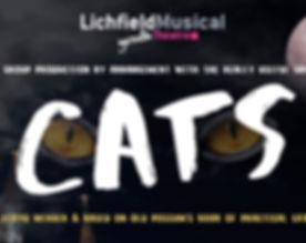 CATS_edited.jpg