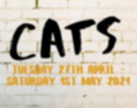 Cats 2021 Header.jpeg
