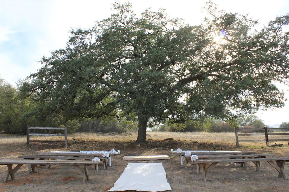 oak Wedding ceremony