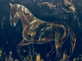 #13 Stallion:monterroso.jpeg