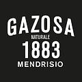 gazosa1883_logo ws.png