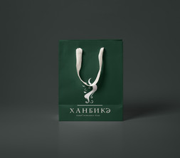 Разработка логотипа в Казани