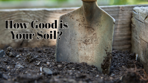 How Good is your soil?