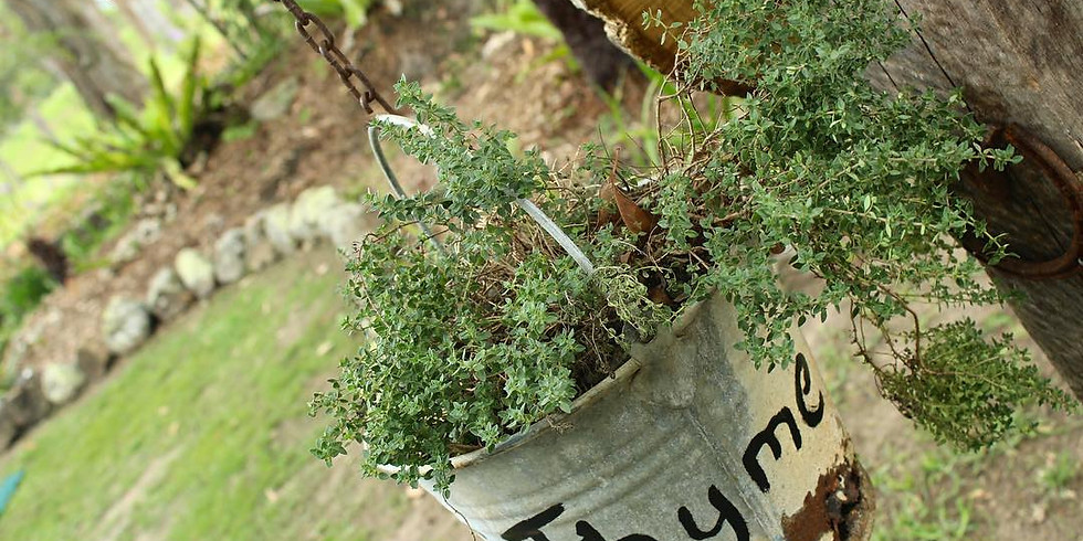 May Field Day - Hillview Herb Farm