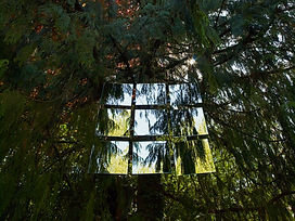 japanese-garden-plants-trees-nature-9-mirrors-copyright-haegele-art-photography-photographer-germany-deutschland-fotograf