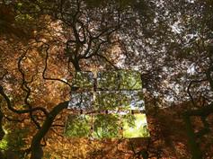 japanese-garden-9-mirrors-copyright-haegele-art-photography-photographer-germany-deutschland-fotograf