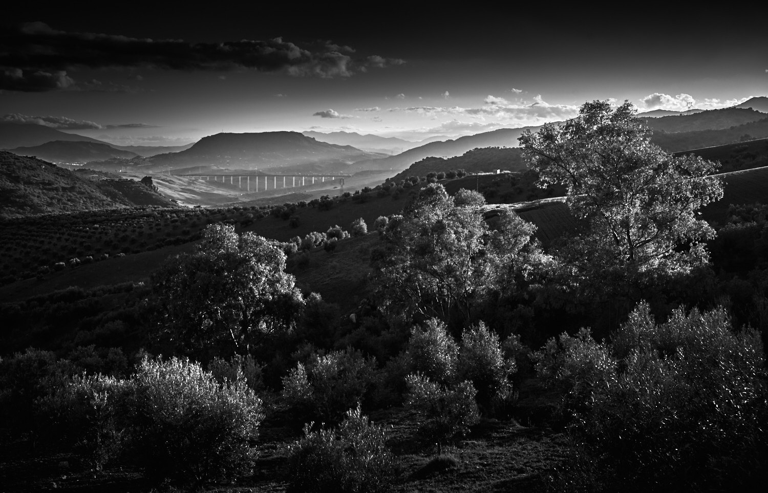 andalucia-black-white-spain-landscape-projects-copyright-haegele-photography-photographer-germany-deutschland-fotograf