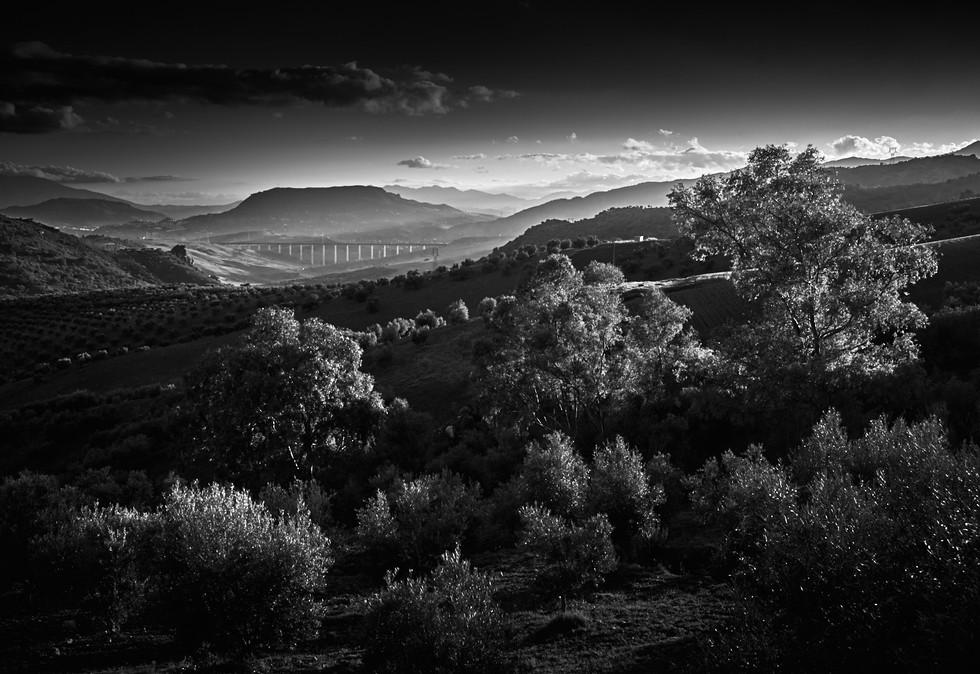 andalucia-black-white-spain-landscape-projects-copyright-haegele-photography-photographer-germany-deutschland-fotograf