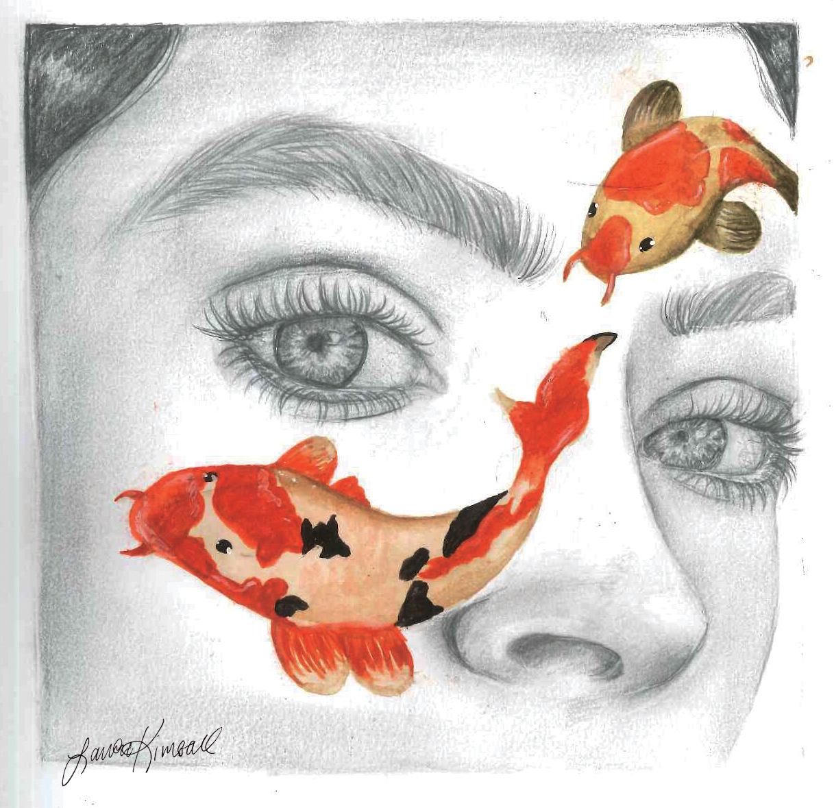 Fisheye Study.