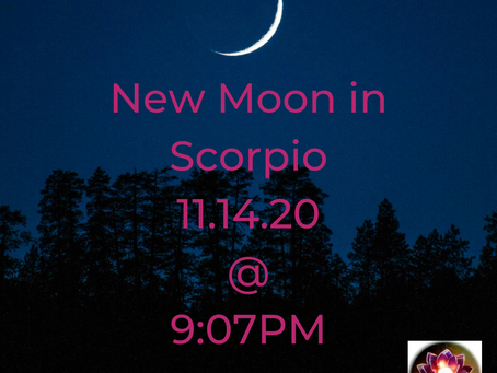 New Moon in Scorpio on 11/14