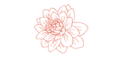 logosamtropico_web-03.png
