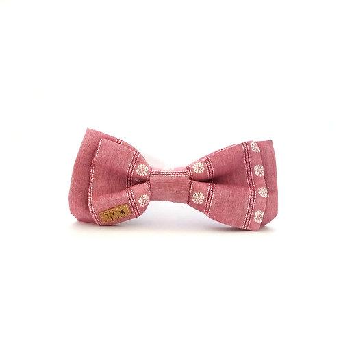 Bow Tie 'Dandelion'