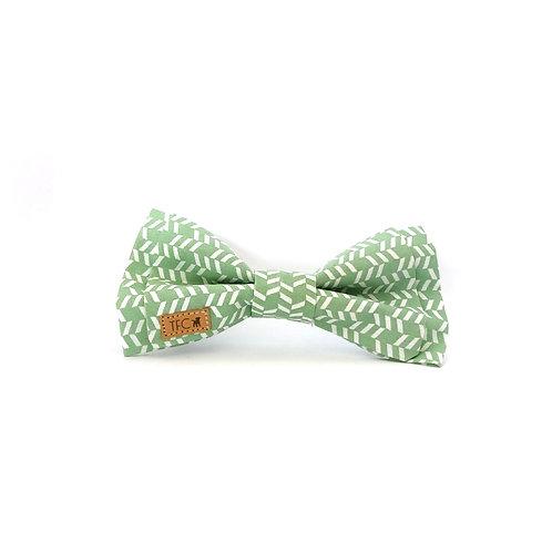 Bow Tie 'Djamena'