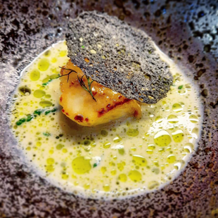 Scallop / Oyster Emulsion / Mussel Cream / Dill