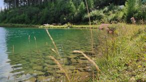Tauchausfahrt Grüblsee