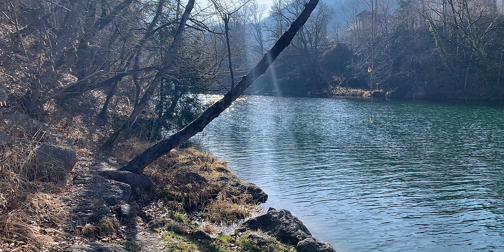 Tauchausfahrt Flusstauchen in Niederösterreich