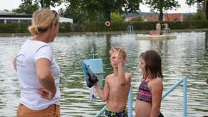 Ferienspiel Naturbad Horn