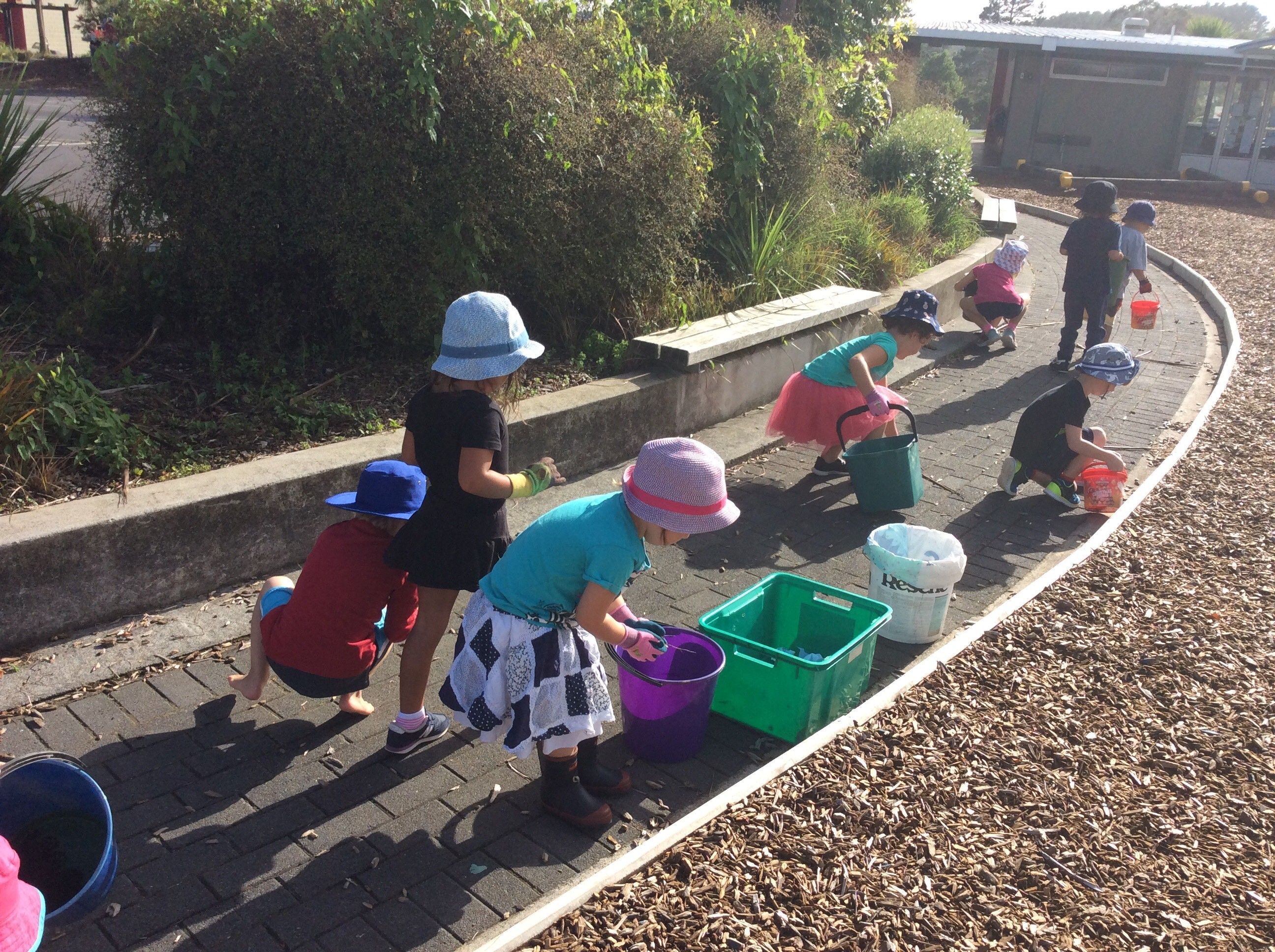 Keeping our school tidy