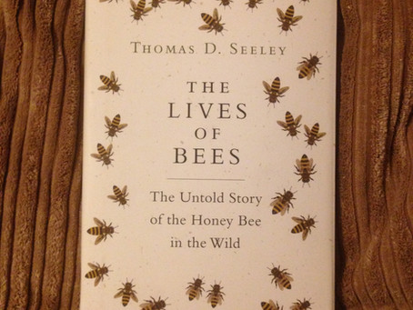 The Lives Of Bees by Thomas D Seeley - our thoughts