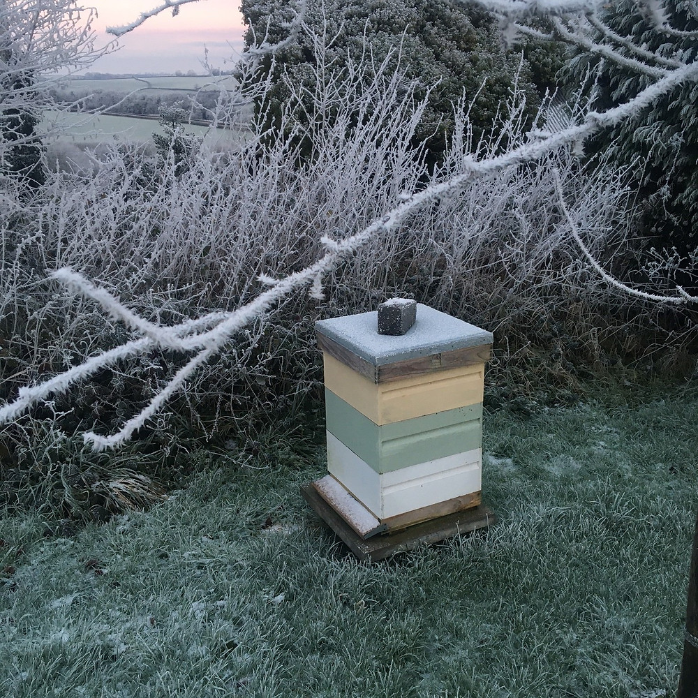 Rose hive with insulated roof in frost