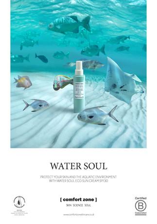 WaterSoul_A4_SHOWCARD.jpg
