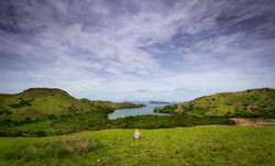 Rica Landscapes