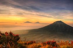 Brotherhood of Volcanoes