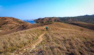 Padar Landscapes