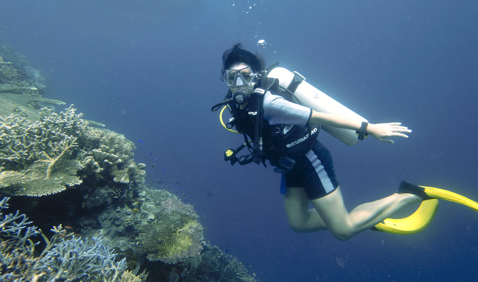 Maratua Dive !