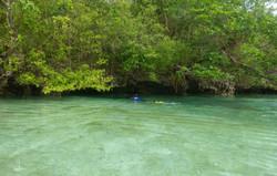 Fish Lake Cave