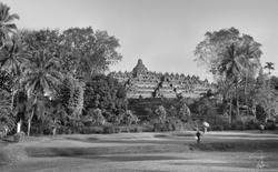 Morning Flight at Borobudur
