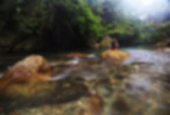 Sungai Tangkahan